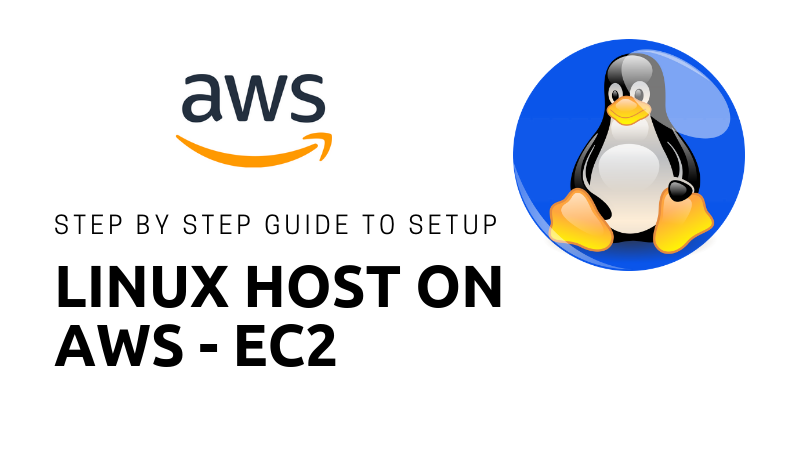 Step by Step Guide To Setup Linux Host on Amazon Web